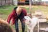 Άνθρωποι vs Ζώα σε ξεκαρδιστικά στιγμιότυπα (video)
