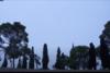 'Ο ανθός' - Μια ταινία μικρού μήκους γυρισμένη από Πατρινό (βίντεο)