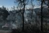Φωτιά στα Γεράνεια όρη: Η χειρότερη δασική πυρκαγιά τα τελευταία 10 χρόνια