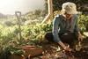 Μοριοδότηση νέων αγροτών - Οι αλλαγές