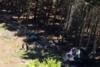 Τρεις συλλήψεις για την τραγωδία με τους 14 νεκρούς από την πτώση καμπίνας τελεφερίκ στην Ιταλία
