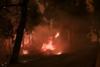 Λέκκας: Αυξημένος κατά επτά φορές ο κίνδυνος για πλημμύρες μετά τις πυρκαγιές