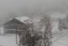 Ο 'Μπάλλος' έφερε τα πρώτα χιόνια στη Βόρεια Ελλάδα (video)