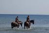 Υπέροχο θέαμα – Καβαλάρηδες με τα άλογα τους στην παραλία της Καλόγριας (pics)!