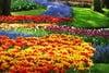 Ερωτική Πρωτομαγιά: Μάθε ποια λουλούδια ταιριάζουν στο ταίρι σου (pics)