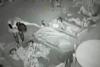 Νηπιαγωγοί σάπιζαν στο ξύλο πεντάχρονα και τα νάρκωναν με κρασί (video)