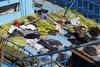 Δυτική Ελλάδα: Να γιατί «βολτάρουν» ανενόχλητοι οι δουλέμποροι σε Ιόνιο και Αδριατική!
