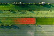 Εκπληκτικές αεροφωτογραφίες που κάνουν τη Γη να μοιάζει με ζωγραφιά (pics)