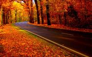 To Φθινόπωρο μέσα από πανέμορφες φωτογραφίες