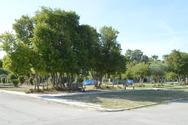 Πάτρα: 'Επιχείρηση' καθαρισμού στην Πλαζ από τον Δήμο (pics)
