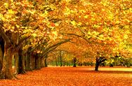 Δείτε πως μεταμορφώνονται τα τοπία όταν έρχεται το φθινόπωρο! (pics)
