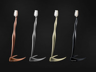 Reinast Luxury Toothbrush: Μια οδοντόβουρτσα... 4.000 δολαρίων! (pics)