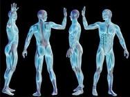 Πράγματα που αγνοούμε πάνω στο σώμα μας