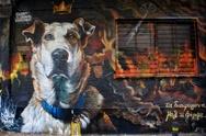 Αθήνα: Ένα αφιέρωμα για τα γκράφιτι της πόλης στην Guardian (pics)