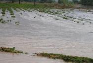 Δυτική Αχαΐα: Σημαντικές ζημιές από την ισχυρή βροχόπτωση σε δρόμους και σπίτια