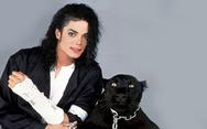 Πως θα ήταν ο Michael Jackson αν δεν είχε κάνει καμία πλαστική; (pics)