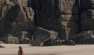 Έβγαλε τα σκυλιά της βόλτα στην παραλία, ολόγυμνη (pic)