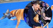Ο Tom Hardy πήρε τον σκύλο του στην πρεμιέρα του 'Legend'! (pics+video)