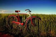 Στο 50% μειώθηκαν οι κάτοχοι των ποδηλάτων