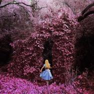 Οι εκπληκτικές φωτογραφίες μιας κοπέλας με iPhone!