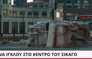 Ένα ιγκλού στο κέντρο του Σικάγο! (video)