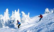 Γαλλικές Άλπεις - Χιονοστιβάδα παρέσυρε μαθητές