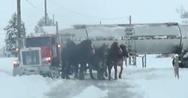 4 άλογα καταφέρνουν να ξεκολλήσουν φορτηγό που είχε κολλήσει στον πάγο (video)