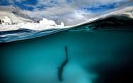 Ταξίδι στη παγωμένη Ανταρκτική (pics)