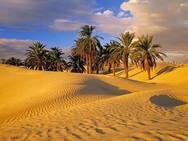 Πόσα πράγματα γνωρίζετε για τις ερήμους; (pics)