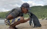 Η απίστευτη φιλία ενός άνδρα με έναν πιγκουίνο (pics+video)