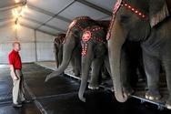 Απαγορεύτηκε η χρήση ελεφάντων στο μεγαλύτερο τσίρκο των ΗΠΑ