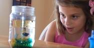 Ένα πείραμα που θα ξετρελάνει τα παιδιά σας (video)