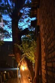 Πάτρα - Μετά το θερινό σινεμά, θέατρο σε κήπο! (φωτο)