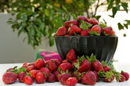 Φράουλες: Οι ευεργετικές ιδιότητες των πράσινων φύλλων τους