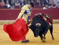 Οι Ισπανοί ζητούν την κατάργηση των ταυρομαχιών