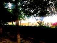 Τα 10 καλύτερα πάρκα της Πάτρας!