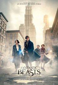 Προβολή Ταινίας 'Fantastic Beasts and Where to Find Them' στα Ster Cinemas