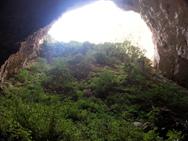 """Ποιος είναι άραγε ο μαγικός κόσμος του """"Aνθρώπου των Σπηλαίων"""";"""
