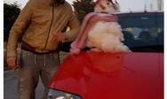 Ηθοποιός ευχήθηκε «καλή χρονιά» με τον χιονάνθρωπό του (pic)