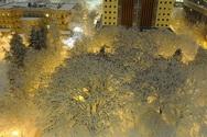 Κοράκια δημιούργησαν ένα μοναδικό σκηνικό σε χιονισμένο τοπίο!
