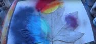 Ο Skech Art ζωγράφισε πλανήτες πάνω σε φύλλα (video)