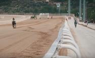 H μονομαχία του Γιώργου Χειμωνέτου με καθαρόαιμο άλογο (video)