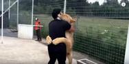 Λιοντάρι 'ευχαριστεί' τον άνθρωπο που το έσωσε και το μεγάλωσε (video)