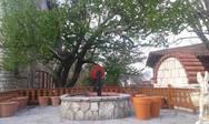 Ο Μορφωτικός Σύλλογος Κυριών Πατρών ταξίδεψε στην Ιερά Μονή Παναγίας Βαρνάκοβας