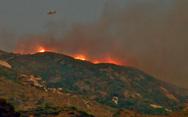 Ζάκυνθος - Στάχτη έγιναν πάνω από 600 στρέμματα δάσους