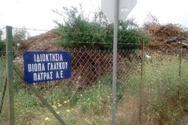 Πάτρα: «Ζούγκλα» θυμίζουν τα οικόπεδα του Βιοτεχνικού Πάρκου