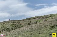 Παναχαικό Trail 07/05/17 Part 9/17