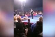 Αρκούδα σε τσίρκο φεύγει από τη σκηνή και πέφτει πάνω στο κοινό (video)