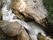 Οικολογική Κίνηση Πάτρας: 'Συνεχίζουμε τον αγώνα για την ποιότητα ζωής και το Φυσικό μας Περιβάλλον'