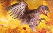 Επιστήμονες βρήκαν αναλλοίωτο πτηνό 99 εκατ. ετών (video)